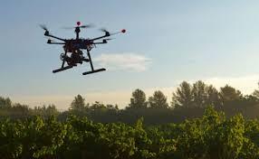Drones contra la deforestación