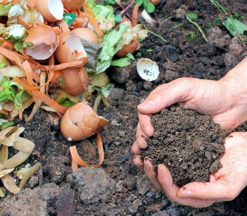 ¿Qué residuos son compostables?
