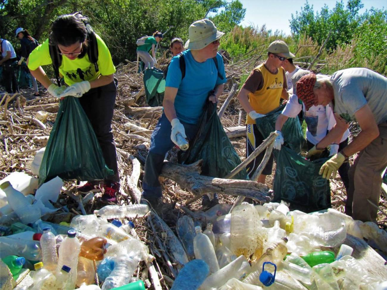 Voluntarios recogen cerca de 3.000 botellas de plástico en la ribera del Ebro