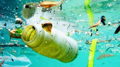 Consecuencias de abandonar basura en la naturaleza